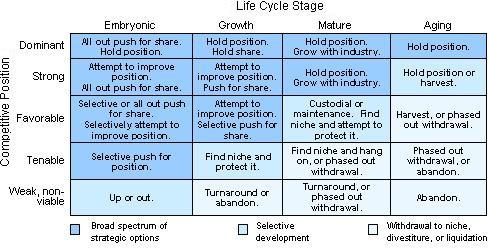 Life cycle portfolio planning Matrix